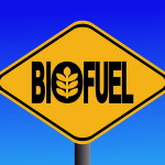 Shaping the future of biofuels