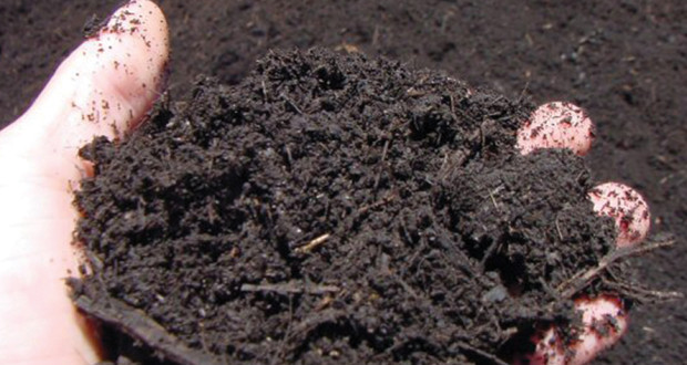 technologies for converting manure treatment