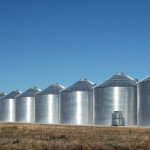 Managing stored grain to minimize storage losses