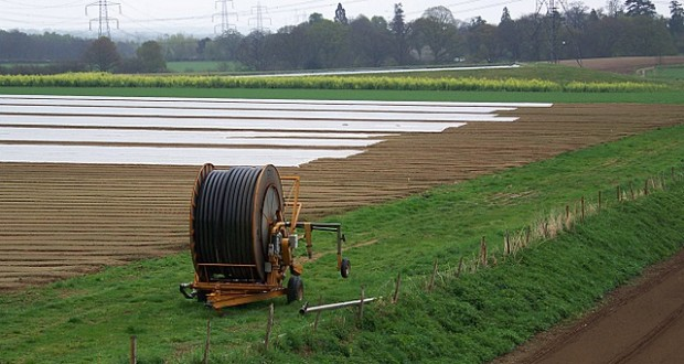 Advantages and Disadvantages of Intensive Farming